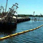 Hay que Cuidar el Impacto Ambiental con el Desarrollo de la ZEE Puerto Chiapas: ENCO
