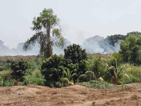 Basurero de Tecún Uman Causa Contaminación en la Frontera