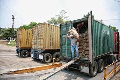 Buscan Certificar Café Para Exportación