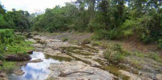 En Riesgo de Secarse Cuencas del Río Coatán y Cahoacán