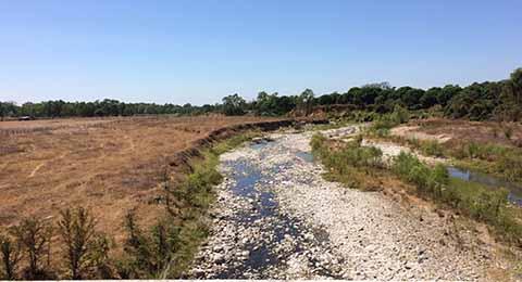 Alerta en Chiapas por Sequía Severa: PC