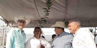 """En gira por la Zona Sierra, el Gobernador entregó fertilizante y árboles frutales; inauguró calles en el barrio """"San Lucas"""" y la rehabilitación del campo de futbol."""