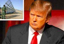 """Presentan Iniciativa de ley Para que """"El Chapo"""" Pague el Muro de Trump"""