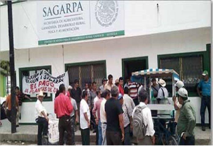 Auditoría Superior de la Federación Detecta Malversación de Recursos en la SAGARPA
