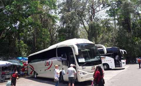 Asaltan a 25 Turistas Alemanes Rumbo a Palenque