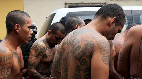 Informa Grupo Antipandillas Combate Frontal a Integrantes de las Maras