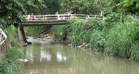 Temen Inundaciones por Temporada de Lluvias