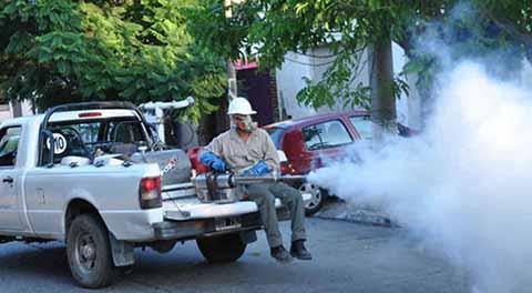 Paralizada la Fumigación y Descacharrización