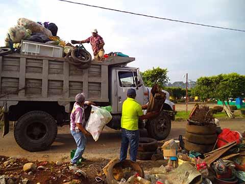 Las lluvias de los últimos días, aunado a la falta de recolección de basura, provocan la proliferación del mosquito transmisor.