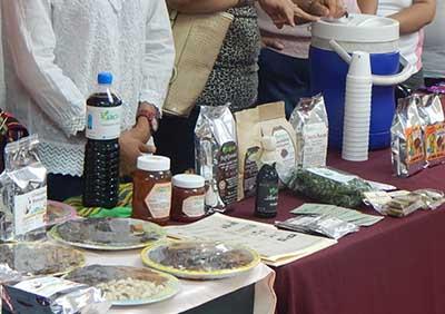 Artesanos Instalarán Bazar en el Malecón del Río Coatán