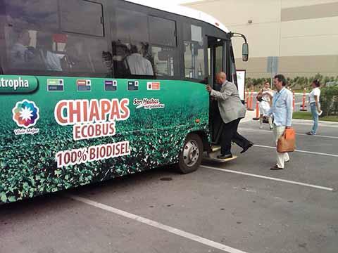 """En Decadencia el Servicio de Transporte """"Tapachultecobús"""""""