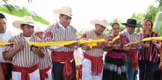 Talento Natural de Pueblos Indígenas Para la Cafeticultura