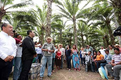 Eduardo Ramírez Cumple a Palmicultores