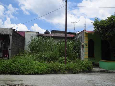 Casas Abandonadas Generan Inseguridad
