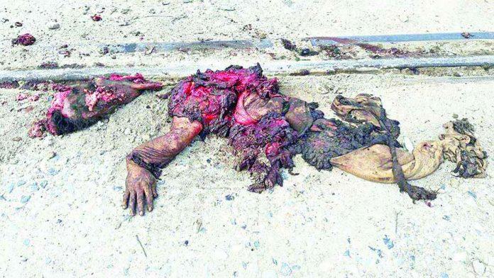 Migrante Murió Despedazado por el Ferrocarril