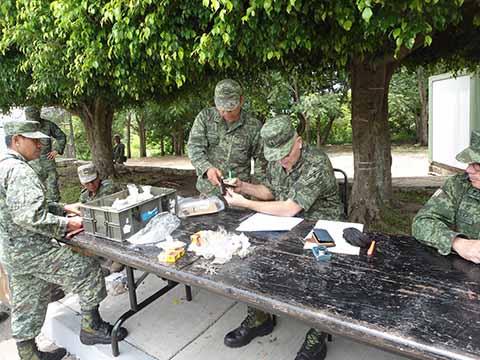 Destruye SEDENA Armas de Fuego Recolectadas en Programa de Canje