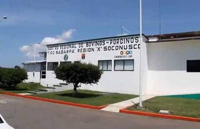 El presidente de la Unión de Tablajeros de los Mercados de Tapachula, José Andrés Ruiz Romero, lamentó el cobro excesivo por la maquila de reses, situación que calificó de abuso, ya que esto dispara los costos de producción, afectando finalmente al consumidor.