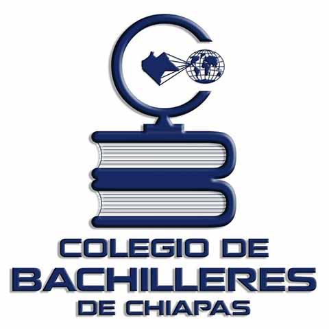Maestros del COBACH Finalizan Paro Laboral al Firmar Acuerdos