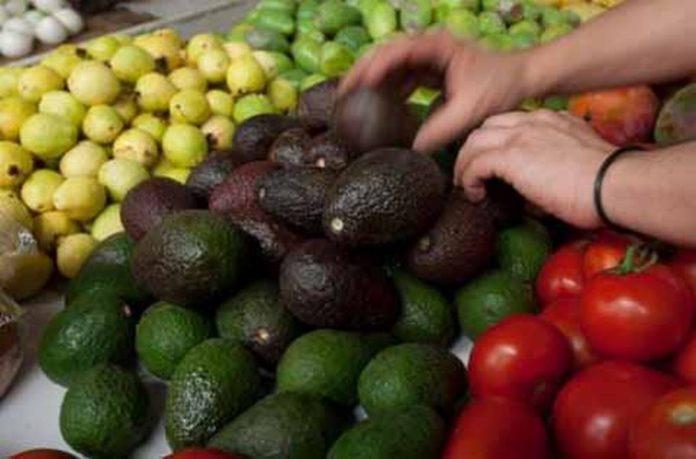 Sin Beneficios Pequeños Productores Agrícolas Mexicanos con el TLCAN