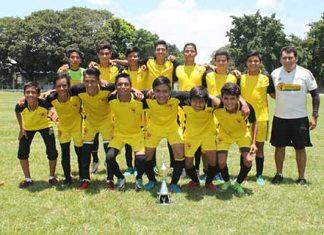 Guepardos, Campeones