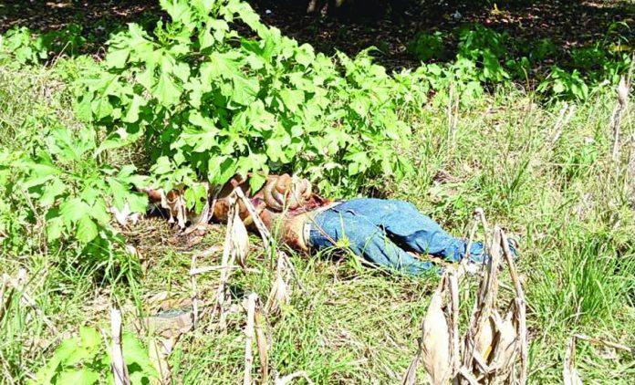 Encuentran Cadáver con Herida en el Abdomen