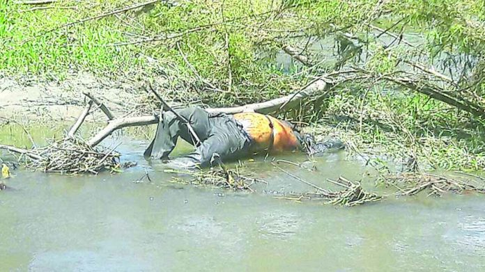 Localizan Cuerpo Putrefacto en el Río Coapa