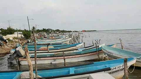 Pescadores de Tonalá en Crisis por el Terremoto de Septiembre