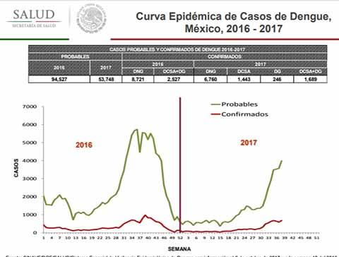 En el País 17 Muertos por Dengue y más de 53 Mil Casos Probables