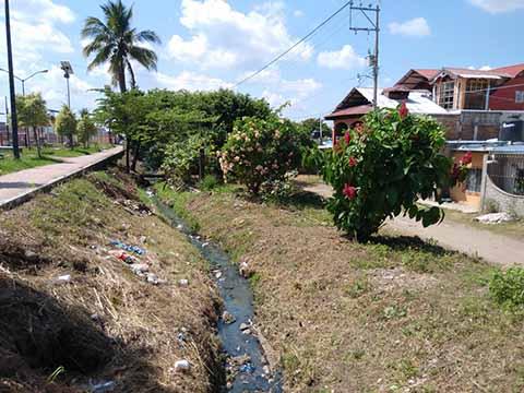 Drenaje a la Intemperie Causa Contaminación en la Colonia Antorcha Vivah