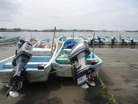 Sector Pesquero a Punto de la Quiebra