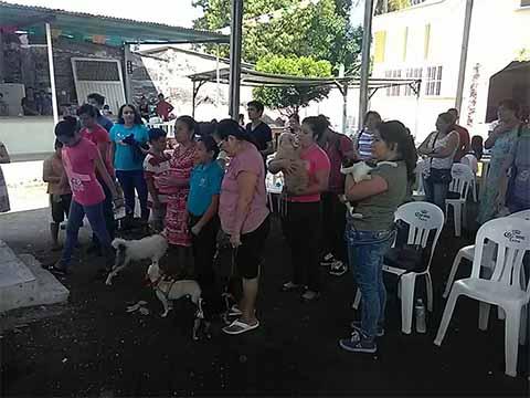 Bendición de Animalitos en San Martín de Porres