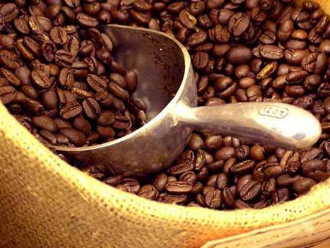 Prevén Recuperación en Producción de Café en el Ciclo 2017-2018