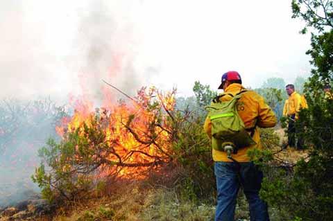 Sigue Chiapas Entre los Primeros Lugares en Incendios Forestales