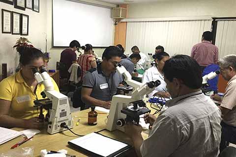 Chiapas Continúa Trabajando Para Eliminar el Paludismo