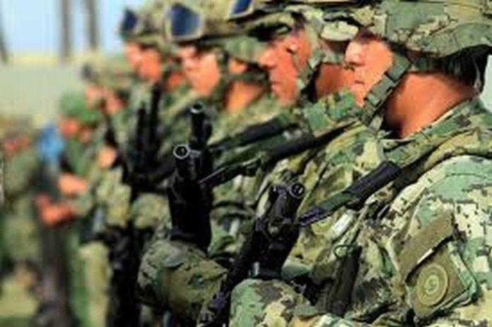 Fuerzas Federales y Armadas en Tareas de Defensa y Preservación de la Paz Pública