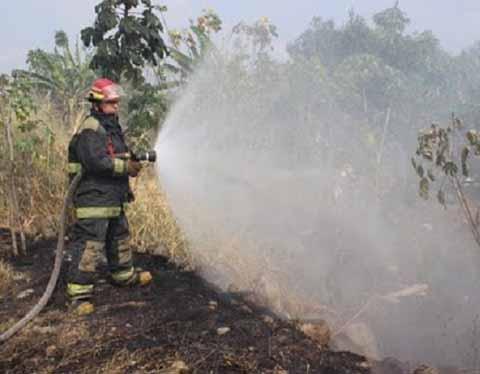 Conafor Preparada Ante Inicio de Temporada de Incendios Forestales
