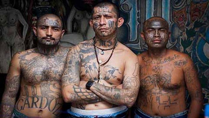Los Gobiernos de Guatemala, El Salvador y Honduras alertan sobre la unificación de las bandas MS-13 y Barrio 18 como Mega MS-503.