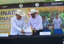 Agricultura Desplaza la Producción Ganadera en la Costa