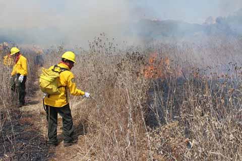 Atienden dos Incendios Activos de los Siete que se Registraron en Chiapas