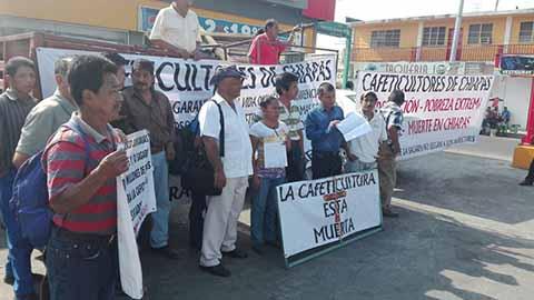 Protestan Cafeticultores de Chiapas por 445 Mdp Desviados en Sagarpa