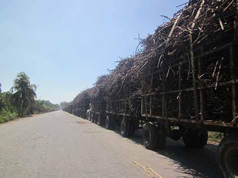 Productores Suspenden Entrega Caña al Ingenio de Huixtla