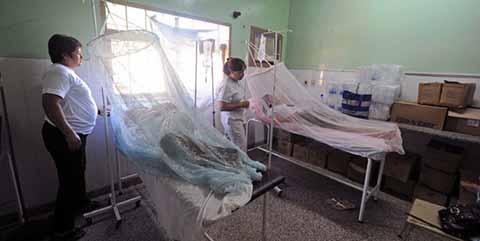 Se Mantiene Tapachula en el Primer Lugar Nacional en Casos de Dengue
