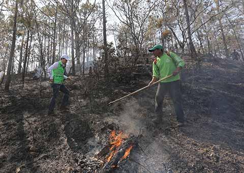 El Centro Estatal de Control de Incendios Forestales (CECIF), reportó que el mayor porcentaje de siniestros se ha originado por actividades agrícolas, caza y actos intencionales, por lo que la colaboración de la población es indispensable para evitarlos.