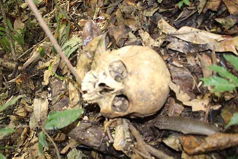 Macabro Hallazgo en el Ejido 20 de Noviembre