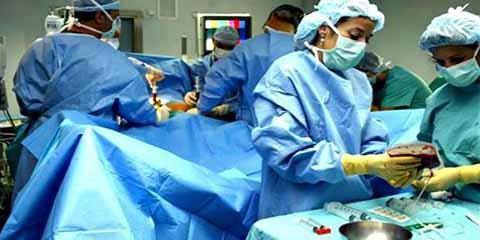 Casi Medio Millón de Mexicanos en Espera de un Trasplante de Órgano