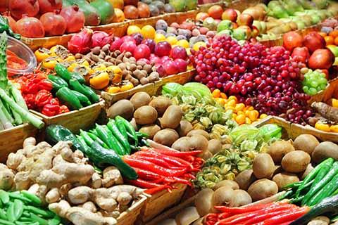 Frontera Sur Exporta más de 300 Mdd en Agroalimentos