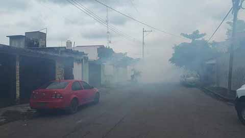 Redoblan Fumigación Contra Mosco Transmisor de Enfermedades