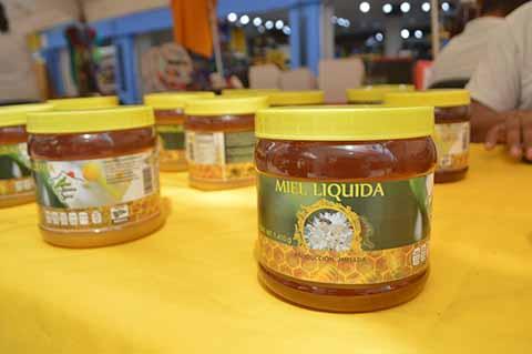 Apicultores del Soconusco Buscan la Certificación Orgánica de sus Productos