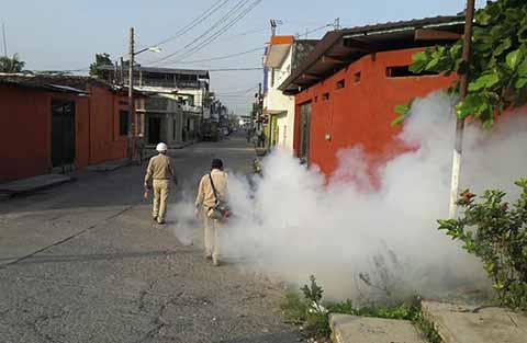 Refuerza Sector Salud Acciones Para el Combate del Dengue