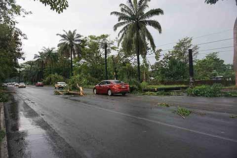 Fuerte Tromba Causa Afectaciones en Zona Alta, Baja y Colonias de Tapachula